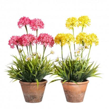 Macetas Con Flores Usados Como Macetas Festival De Flores Y