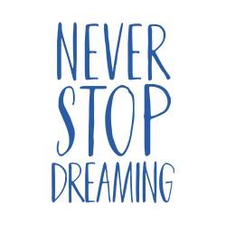 VINILO 20X18CM NEVER STOP DREAMING
