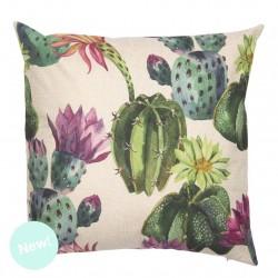 cojin cactus