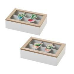 caja para te cactus
