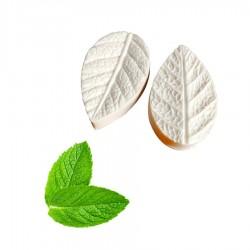 molde texturizador hojas de menta