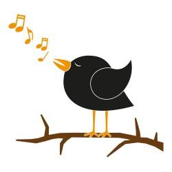 vinilo pajaro cantando